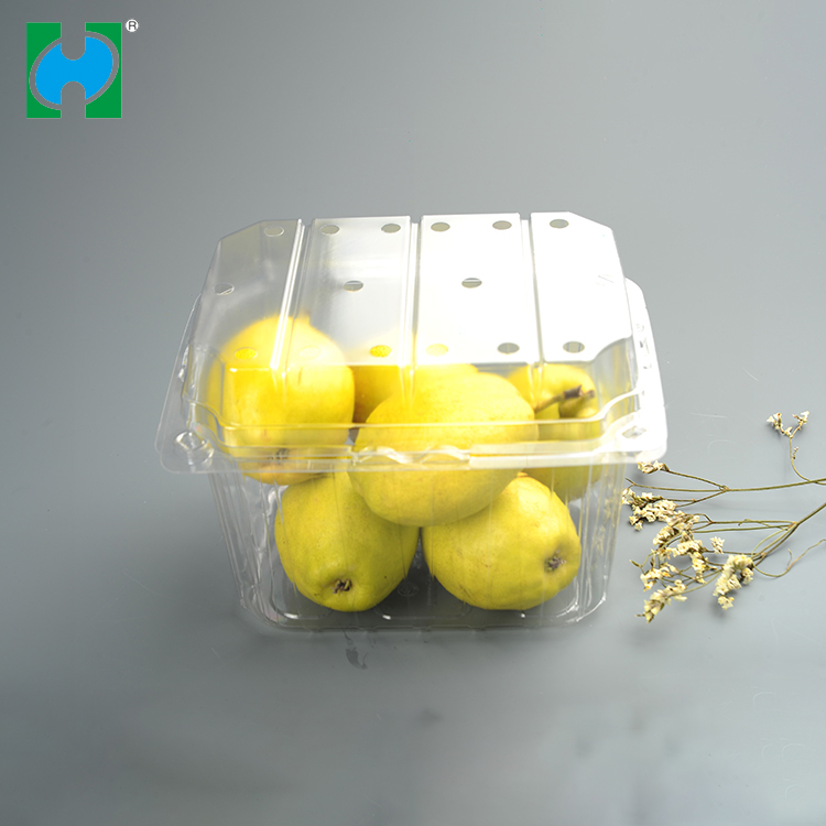Brand Custom Disposable Plastic Pet Storage Takeaway Food Pallet Container For Fruit