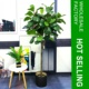Artificial Tree Ficus Lyrata / Fiddle Leaf Fig Tree Wholesale Factory, Amazon Supplier (RTA-C04050)