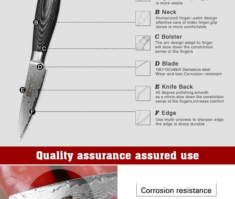 "HTB1eHpTg4HI8KJjy1zbq6yxdpXac - XINZUO 3.5"" inch Paring Knife 67 layers Japan Damascus Steel Peeling Fruit Knife"