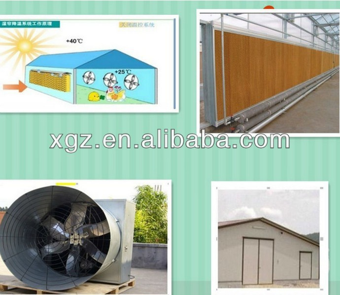 best price design chicken egg poultry farm shed with automatic equipment