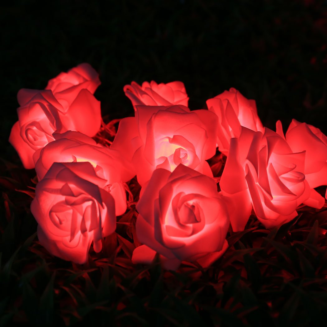 Get Quotations · Eshion 20 LED Rose Flower String Lights For Valentineu0027s  Day Christmas Wedding Bedroom Halloween Patio Party
