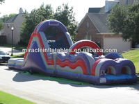 Little Einsteins Theme Backyard Bouncy Castle For Commercial Use ...