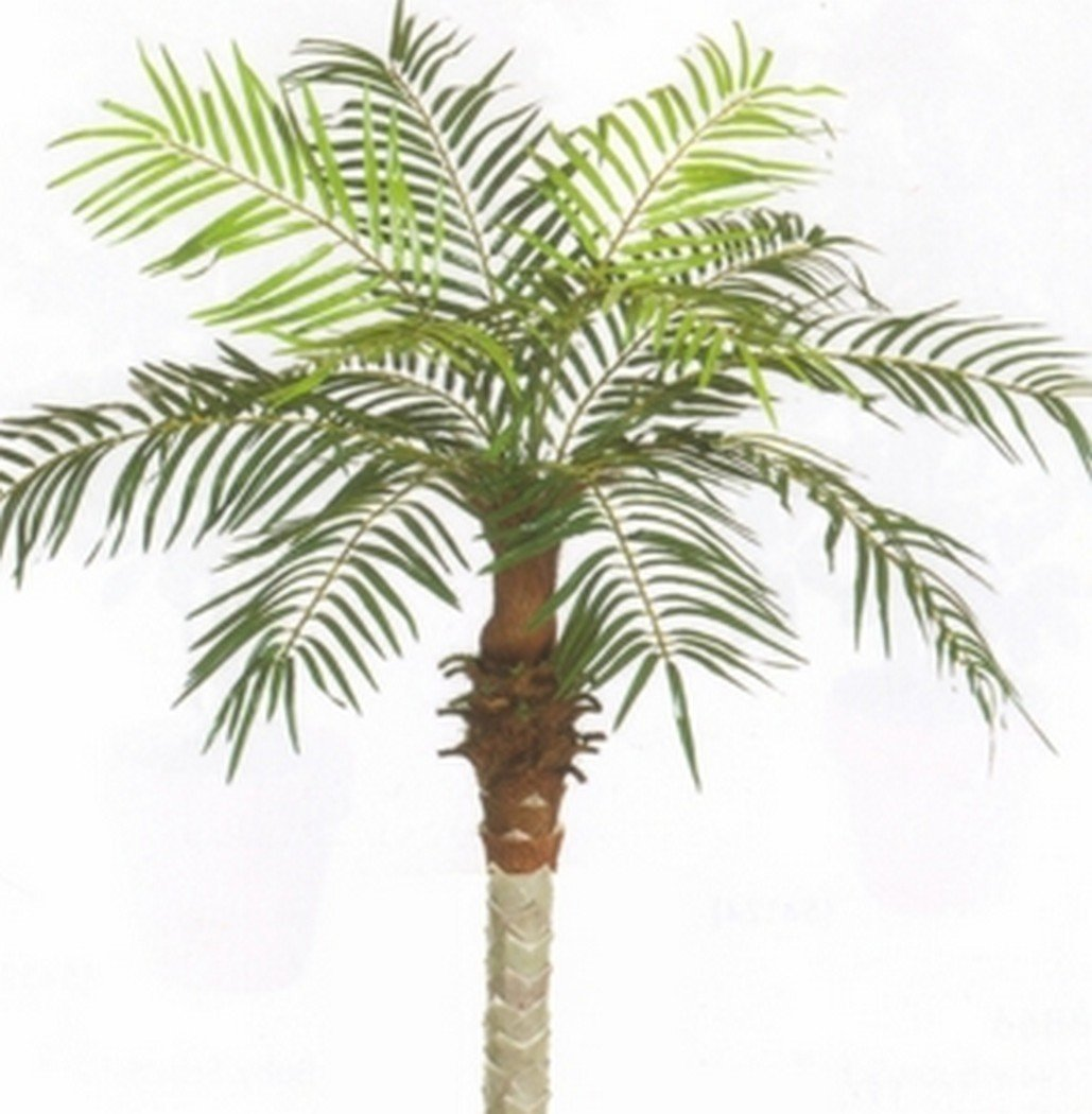 One 3 foot Artificial Silk Phoenix Palm Tree