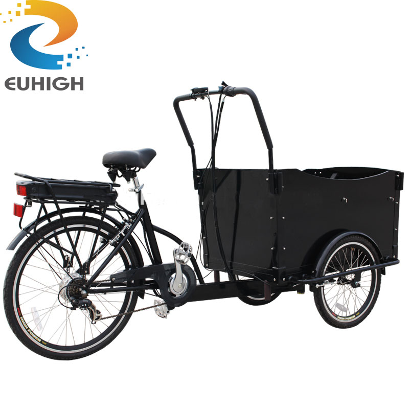 electric cargo tricycle Hot sale CE Proved