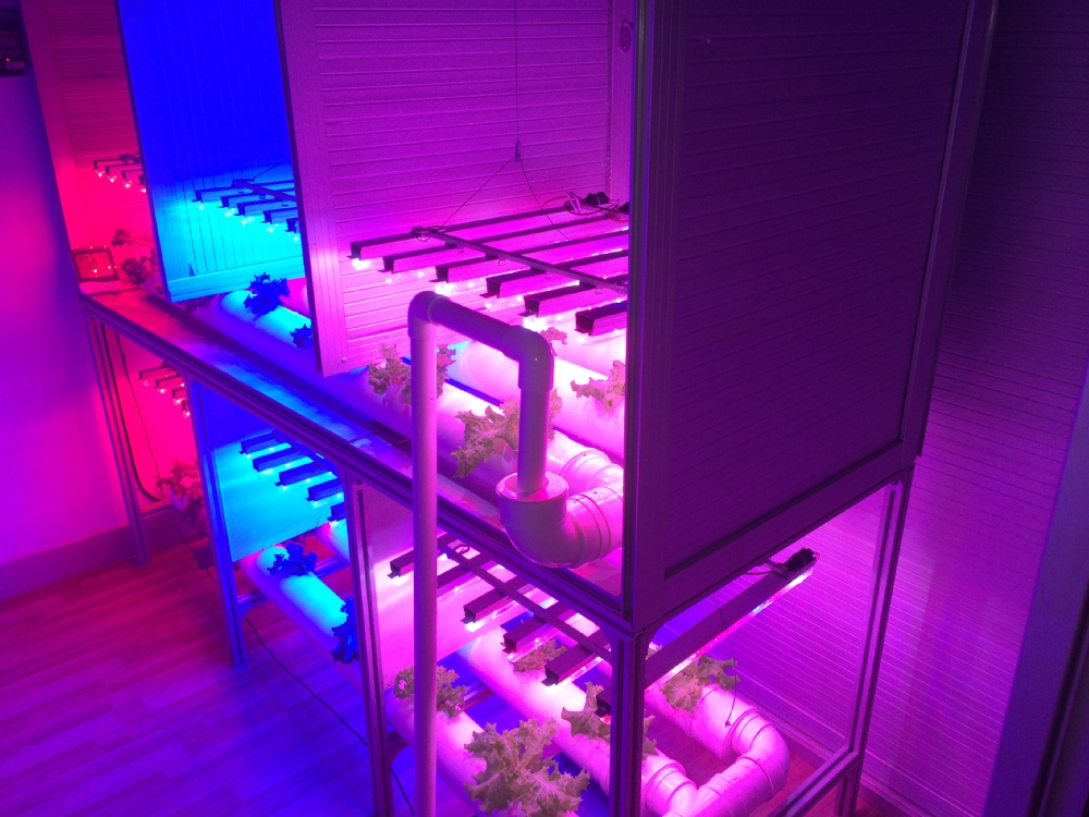 Vanq Led Grow Light For Microgreens,T8 Led Tube Lamp For Plant ...