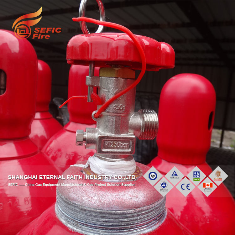 Green Power 	Promotional	Co2 Gas Refill