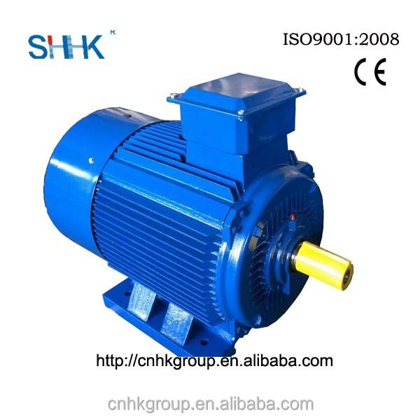 IE2 squirrel cage 3 phase motor