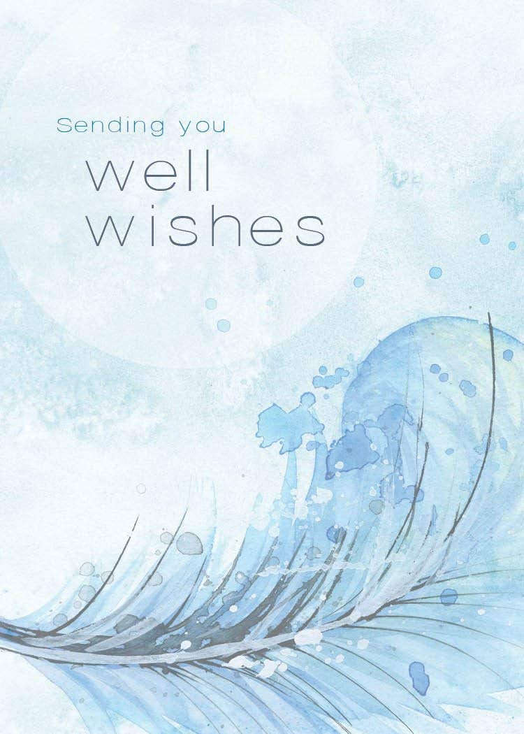 Get Well Greeting Cards - GW1701. Greeting Cards Featuring a Get Well Message on a Light Blue Background with Feather Designs. Box Set Has 25 Greeting Cards and 26 Bright White Envelopes.