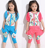 711 2015 wholesale fashion hot sale new south korea summer floral stitching t-shirt+half pants girls fresh clothes set