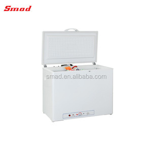 Gas Portable Chest Freezer Popane Ice Cream Freezer