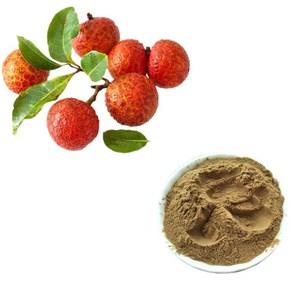 Li zhi GMP standard high quality pure fresh litchi lychee fruit flavour  extract powder