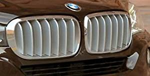 BMW Brand 2014+ F15 X5 OEM Genuine Pure Experience Titanium Front Grille Pair