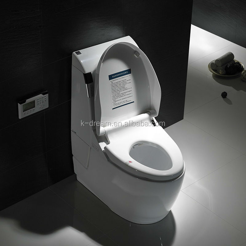 Japanese Self Cleaning Toilet Day  Dreams Are Made Of These - Japanese self cleaning toilet