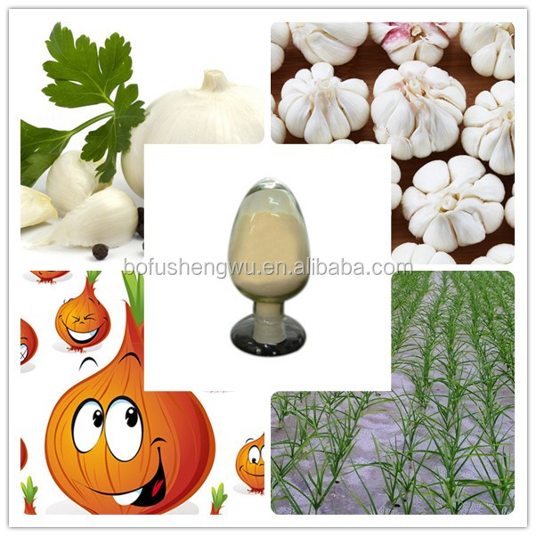 garlic allicin/garlic extract 1% allicin/allicin for poultry