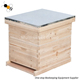 Hot sale 2 layer 10 Frame wooden Langstroth Beehive