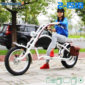 Best Selling Chinese Products Vintage 36V 250W Hero Electric Bike Sunny Cruiser Ebike