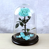 Tiffany preserved rose in glass dome