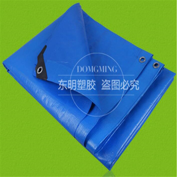 Blue Color Waterproof Tarpaulin Sizes And Price List - Buy Tarpaulin  Sizes,Tarpaulin Price List,Tarpaulin Price Product on Alibaba com
