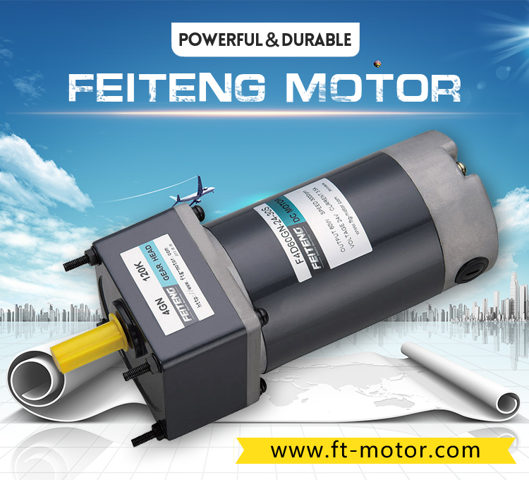 24v 12v dc motor with gear reduction hollow shaft