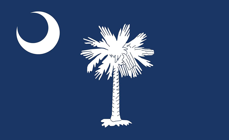 Gallopade Publishing Group South Carolina Flag Sticker (9780635116727)