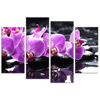 HD Flower Canvas Prints for Bedroom Living Room Wall Decor HD Butterfly Orchid Photo Printed on Canvas