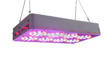 Import Indoor Garden Led Plant Light Greenhouse Used Grow Lights Sale 300w Led Grow Light Buy 300w Led Grow Light Led Plant Light Greenhouse Used