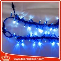 Expensive led christmas light chaser