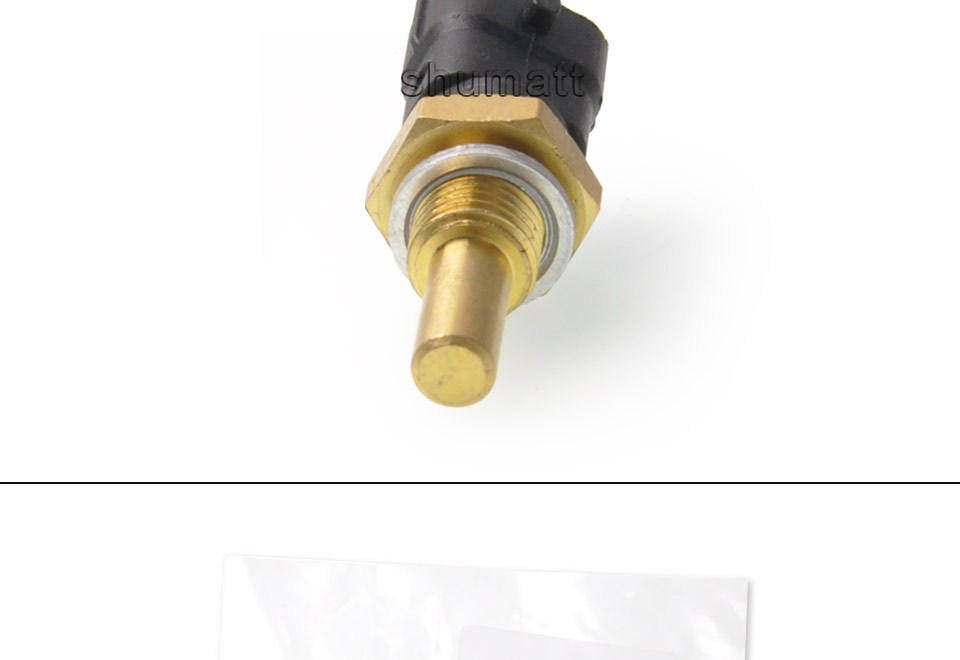 0281002209 bosch water temperature sensor for dongfeng fiat isuzu chevrolet (5).jpg