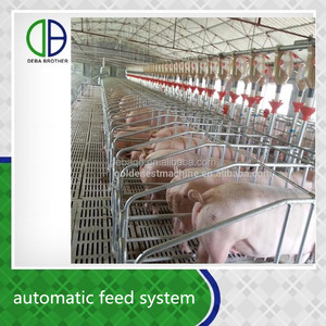 Save time and labor auger auto feeding line automatic controlled