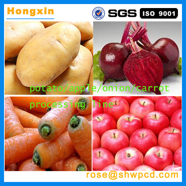 Hot sale fruit processing line/vegetable processing machine/potato apple grading machine with best price