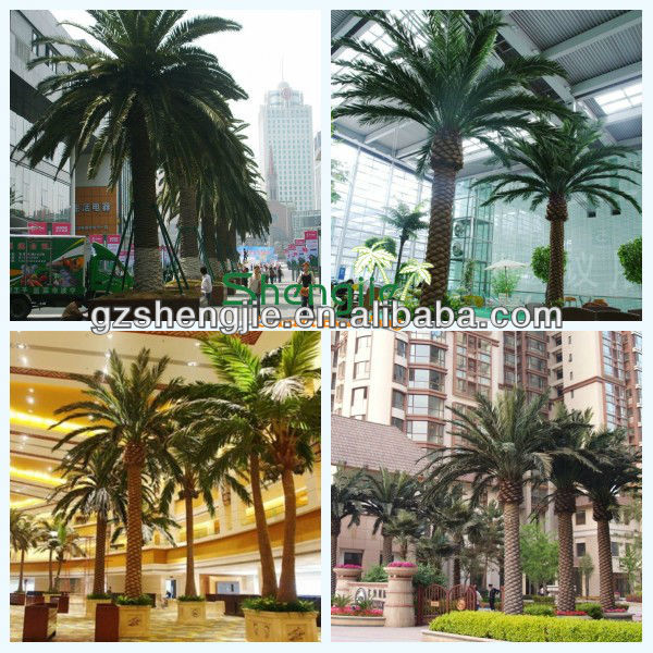 project used artificial palm tree coconut tree in factory price