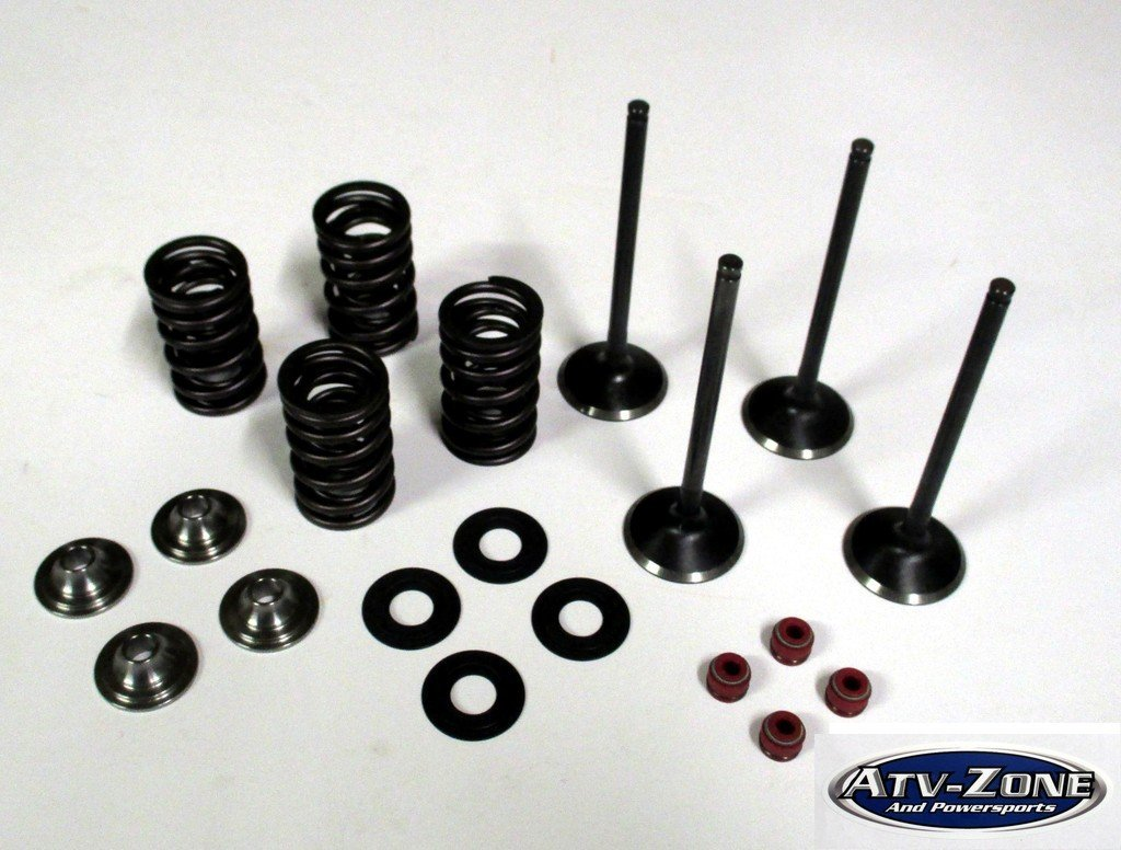Stainless Steel Intake and Exhaust Valves with Spring Kit Raptor 660R 2001-2005