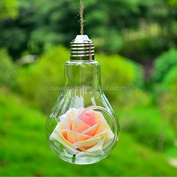 Hanging Glass Light Bulb Terrarium For Succulent Plants Buy Light