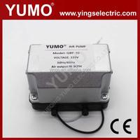 yumo QBF-10 10L/min Pump Pressure 0.018mpa mini air ozone generator Mini Pump