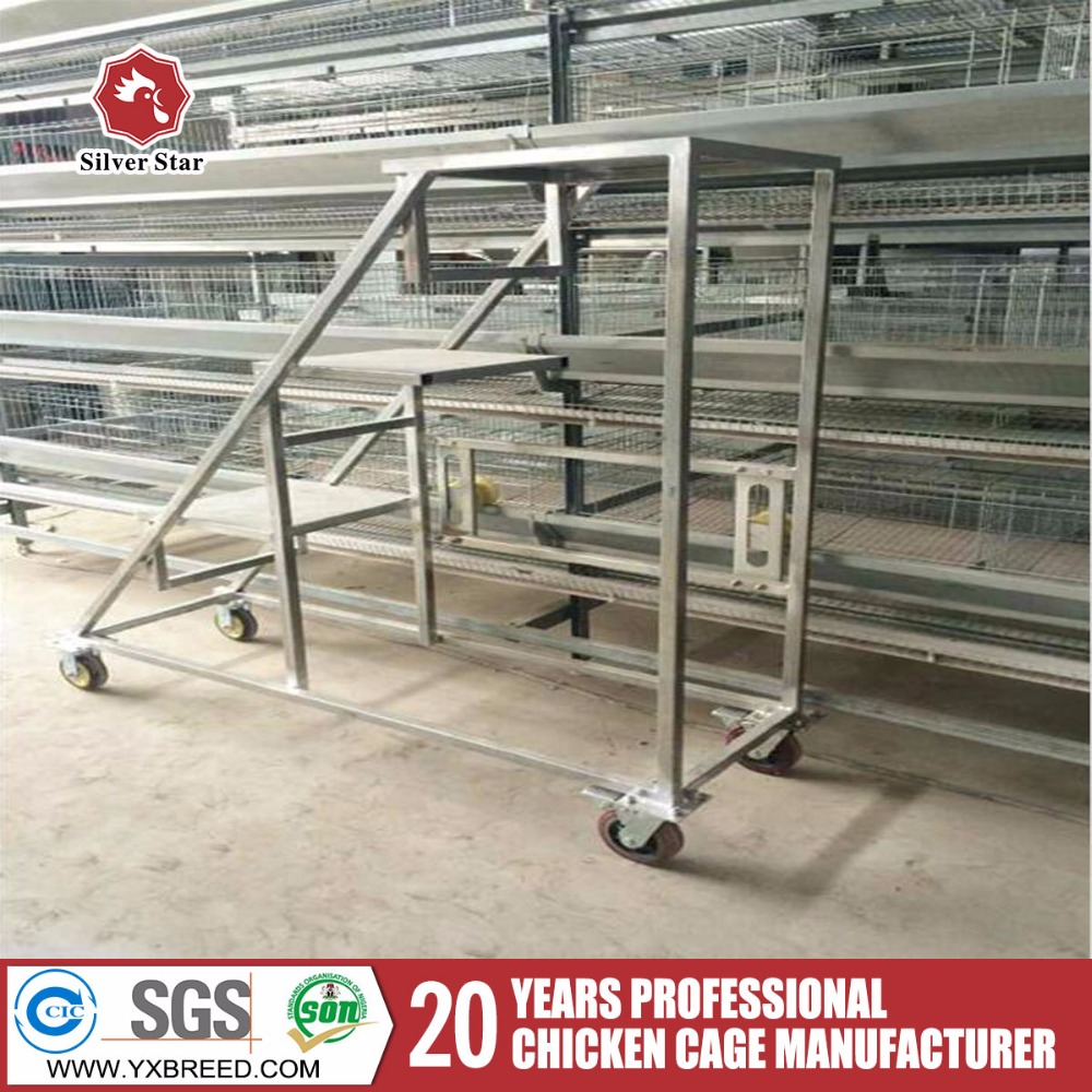 Full automatic battery cages laying hens sell in algeria price