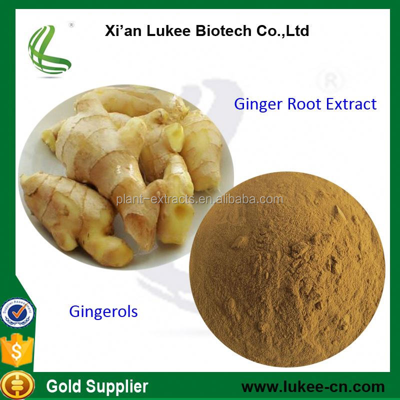 China suppliers black ginger root powder,10:1 red ginger root extract,ginger root tea benefits