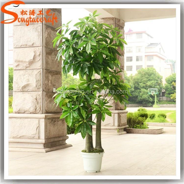 Todos los tipos de piezas decorativas indoor plantas for Plantas decorativas de plastico