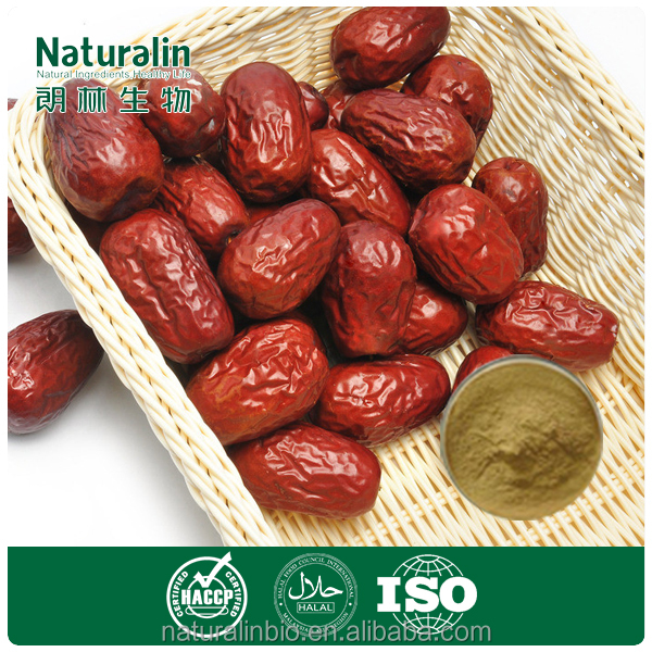 Chinese Red Date Powder Extract