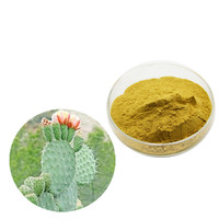 Top Quality Natural Plant Hoodia Gordonii Cactus P.E.extract