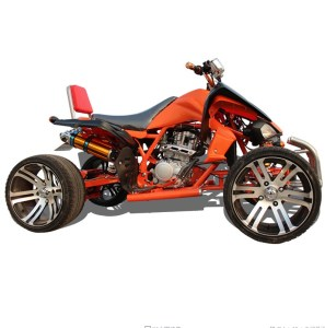 Chinese chain drive air cooling racing quad atv 250cc in ATV
