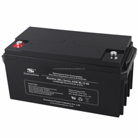 Hot Sell Rechargeable UPS 12V 55AH Valve Regulated Lead Acid Battery