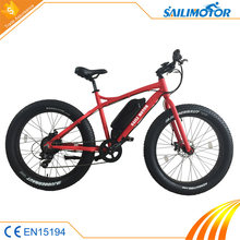 8FUN motor 48V 500W electric bike