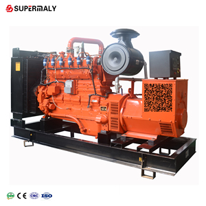 10-1000 kw natural gas generator price