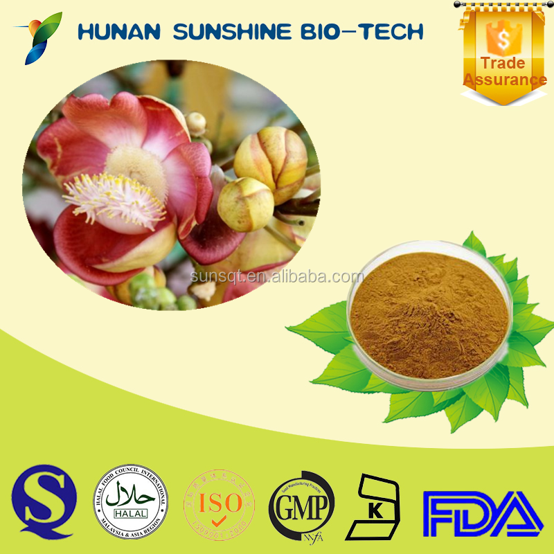 Refreshing and restoring consciousness product 10:1 Lime flower extract