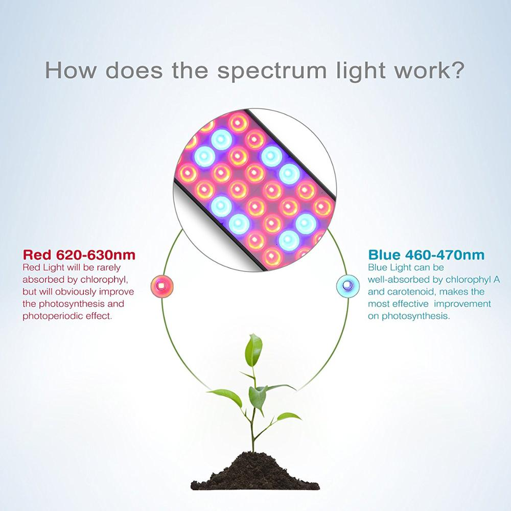 Professional nanotech reflector horticultural plant greenhouse full professional nanotech reflector horticultural plant greenhouse full spectrum strip light bar commercial lettuce grow bulb light ccuart Image collections