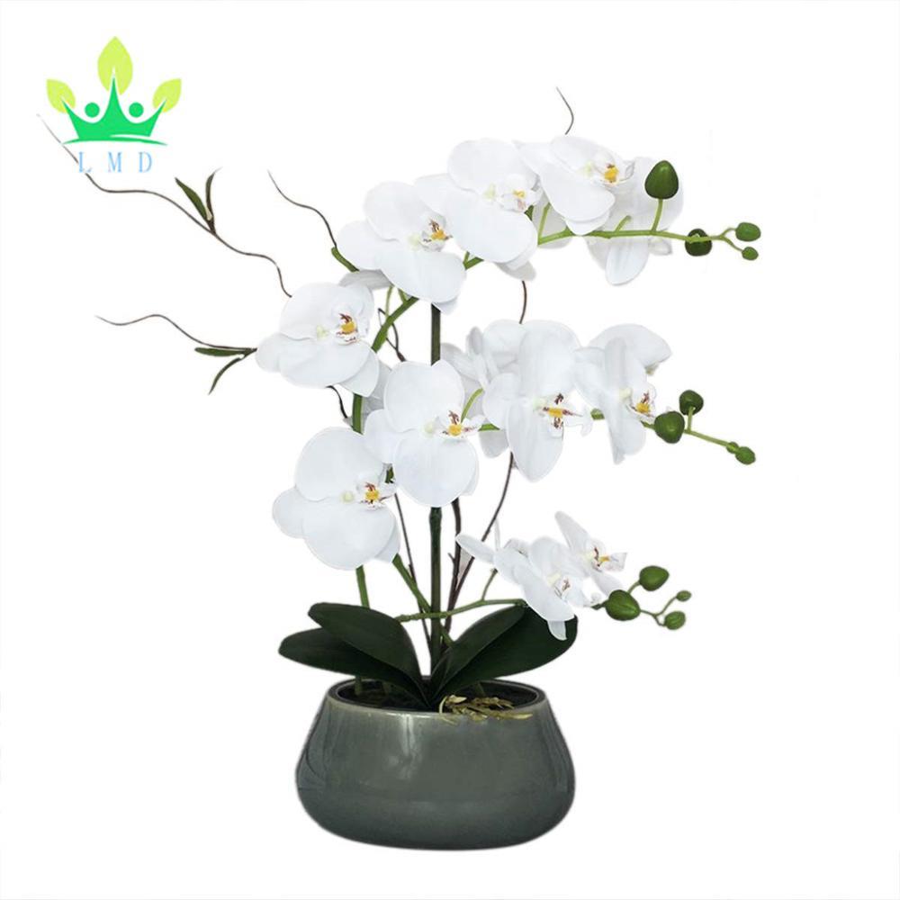Contoh Soal Dan Contoh Pidato Lengkap Gambar Rangkaian Bunga Anggrek Plastik