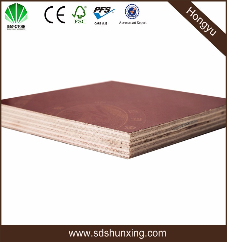 Shunxing Branch Company Teng Long Wood Industry Co.,Ltd Plywood Factory Film Faced Plywood JOHN T5