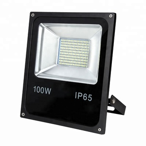 China Supplier IP65 Waterproof Led Spotlight SKD 100W Led Flood Light