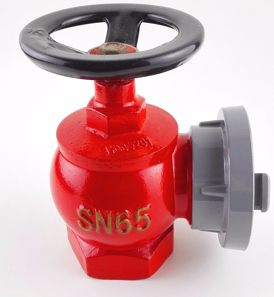2 1/2 inch Double-outlet fire hydrant valve SNSS65 for export