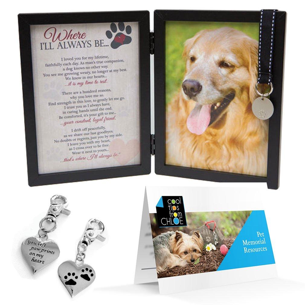 Cheap Pet Memorial Photo Frame, find Pet Memorial Photo Frame deals ...